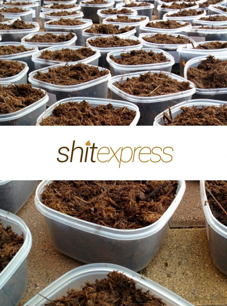 Shit Express, envía una mierda a tus enemigos